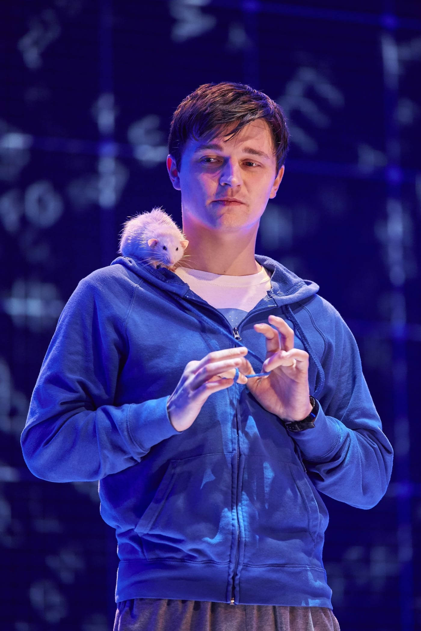 The Curious Incident of the Dog in the Night-Time  , UK Tour