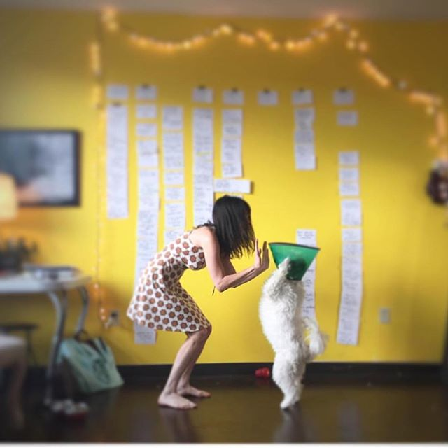 I'm on a late night editing bender....and anytime I get discouraged I pull up this photo of my dog giving me a hi-five on July 28, 2015. The day I completed what I thought would be the final version of the script. Little did I know it would be 3 more years until I was close to being done. Feeling the gratitude for all the friends and folks who've encouraged me along the way. *Feel free to pull up this pic of Dolly giving me a hi-five anytime you need a pick me up • • #indiefilmmaking #womeninfilm #director #filmmaking #insporation