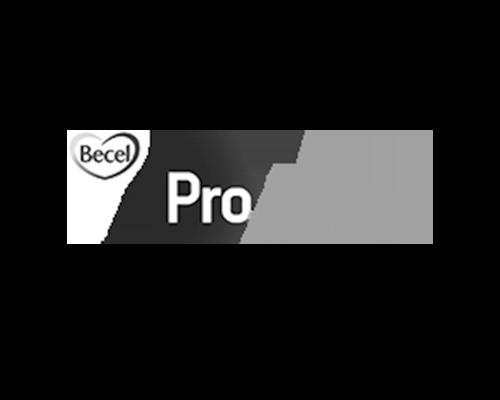 becel_proactive_500.png