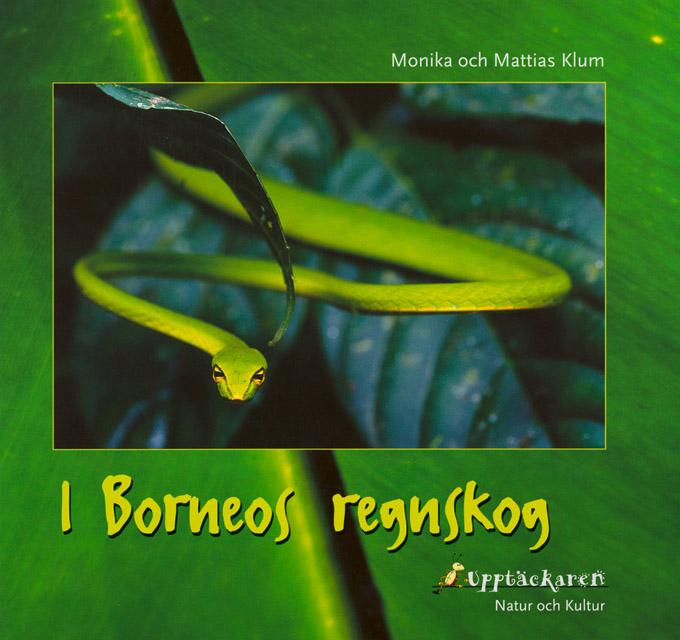 Inside Borneo, 1999