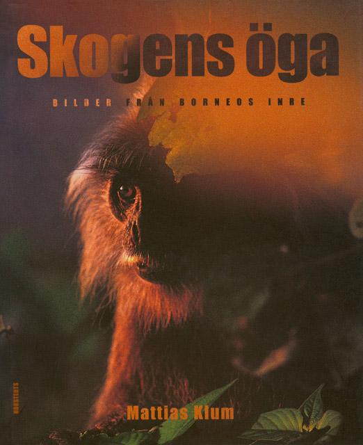 Borneo's Rainforest, 1997