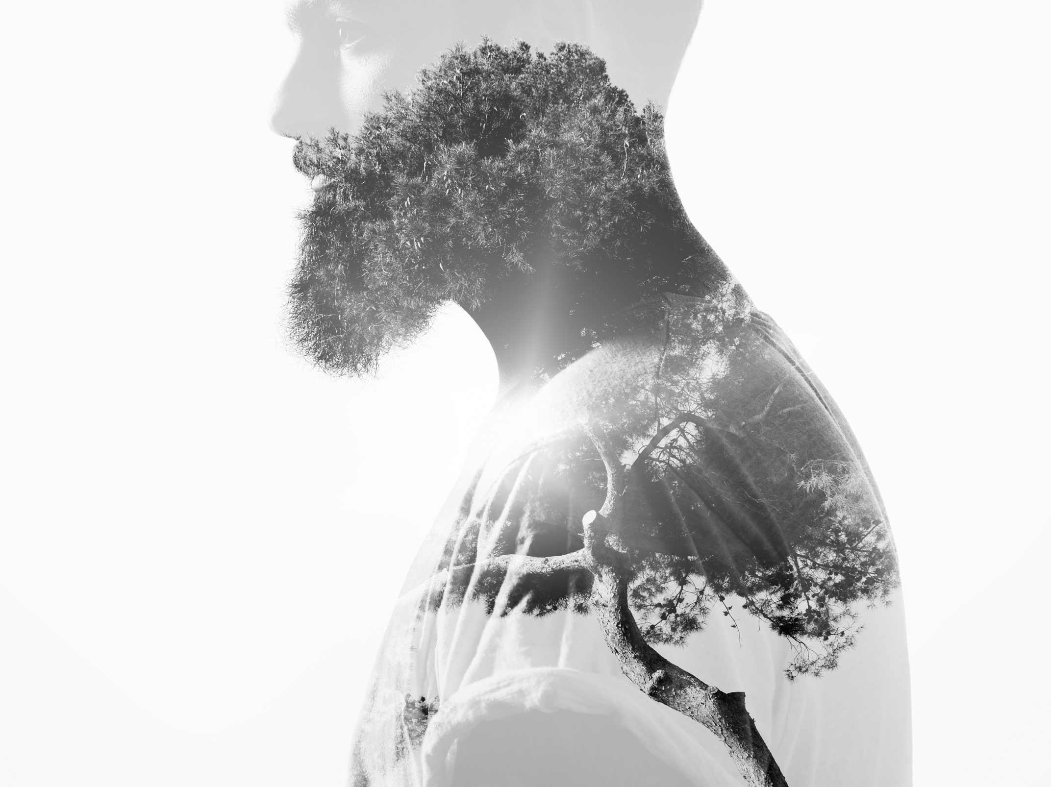 Beard Banner - About.jpg