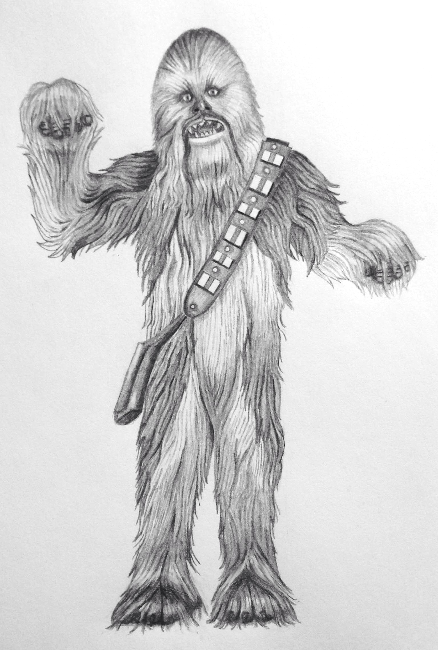 CHEWBACCA WELCOMES YOU!