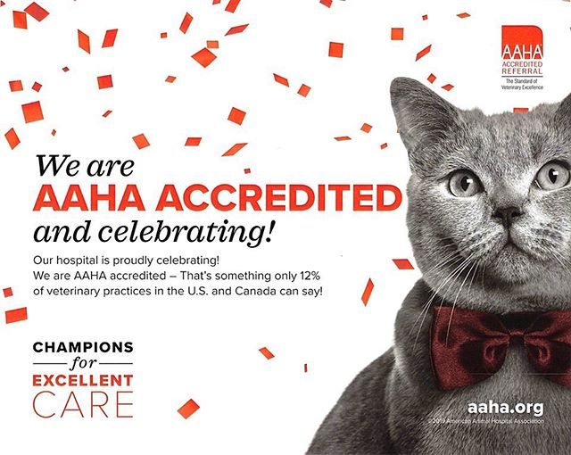We're exited to announce our hospital was re-accredited on more than 900 standards of veterinary excellence today!#aahaproud #catclinicvet