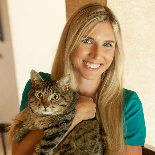 We want to take a moment to welcome Dr. Lauren Evans to the Cat Clinic family!