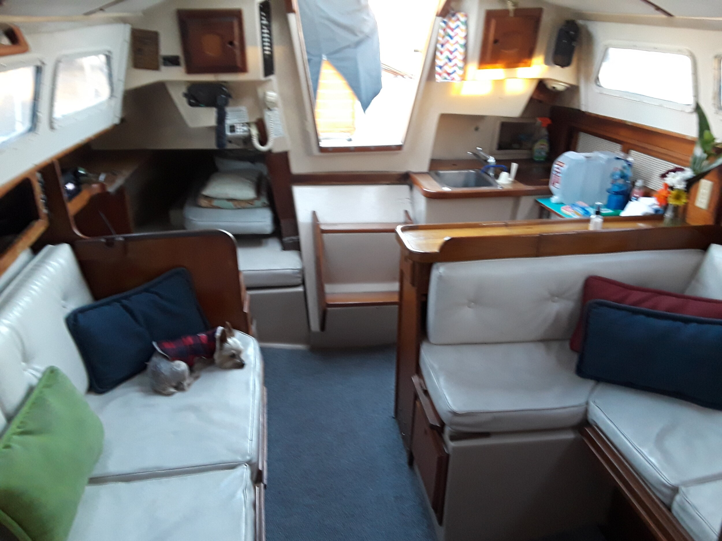 newport 33 interior.jpg