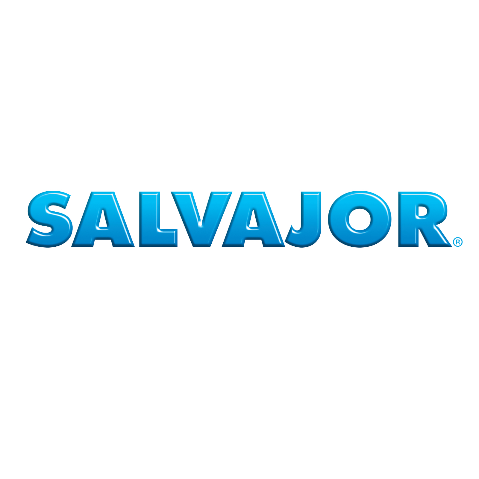 salvajor.jpg