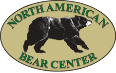 American Bear Center.png