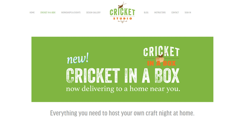 cricket in a box website business by barnhill.jpg
