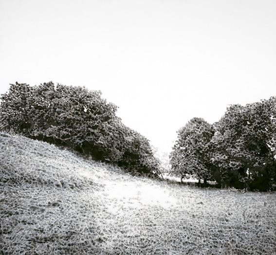 SAUTOUR paysage.jpg