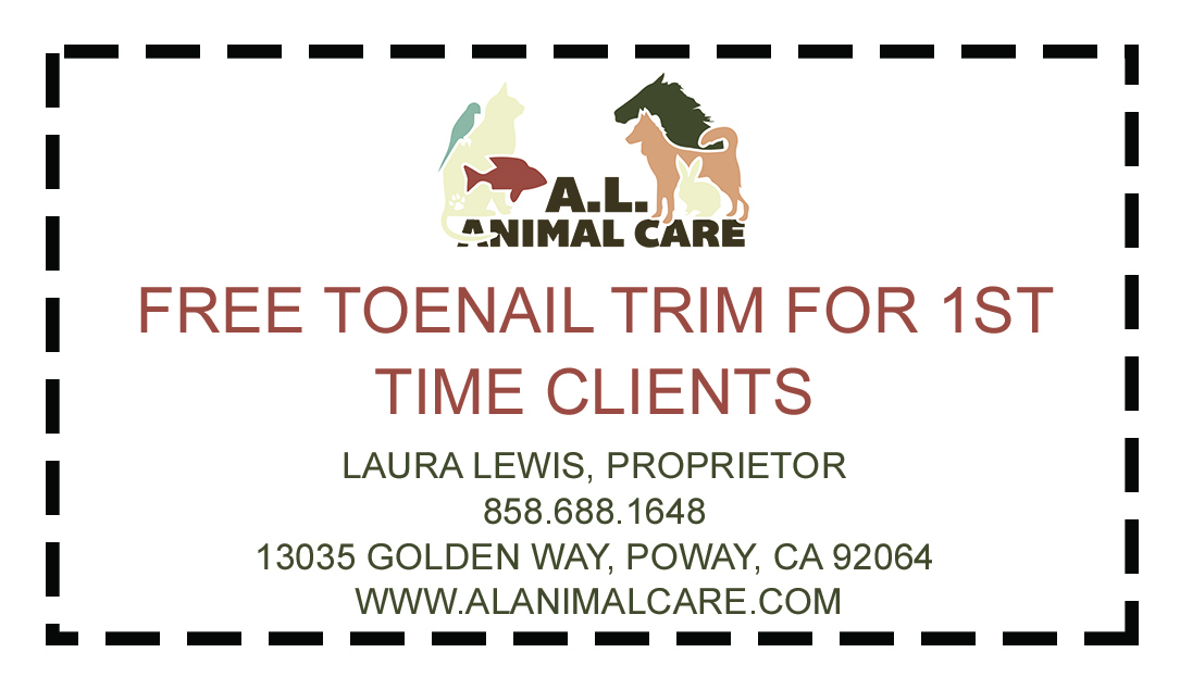 Toenail Trim Coupon
