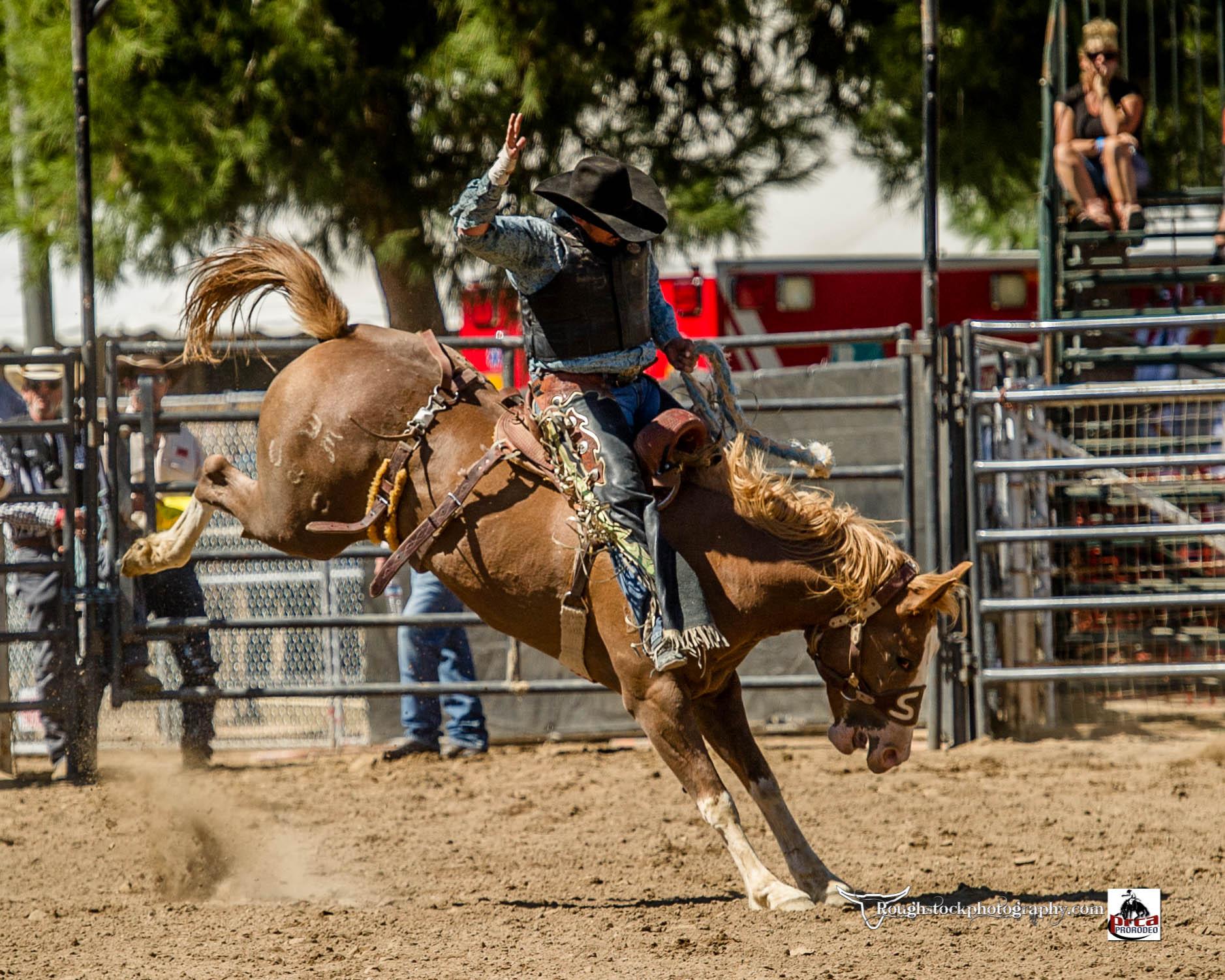 Al_Animal_Care_Poway_Rodeo.jpg