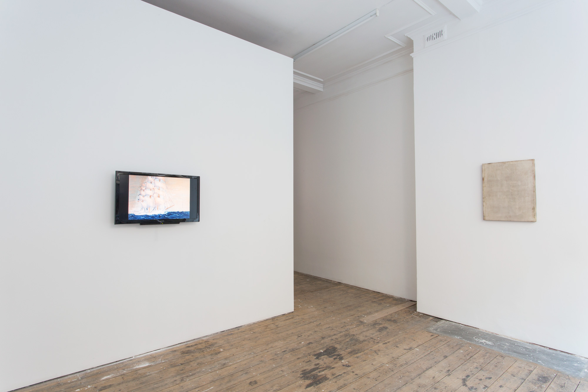 Installation view (pictures with Jason Simon / Mark Dion, left)