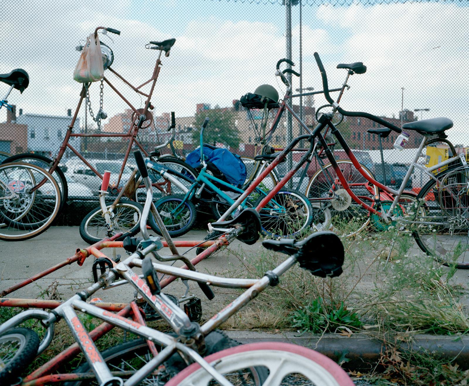 Bikekill10_28-bikes-03.jpg