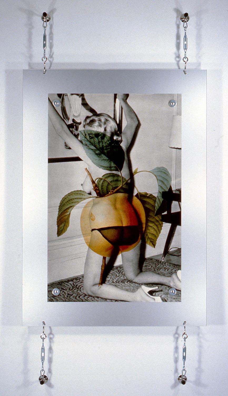 "S/M Nude , 1995, 91 x 45 1/4"", digital print, metal and hardware."