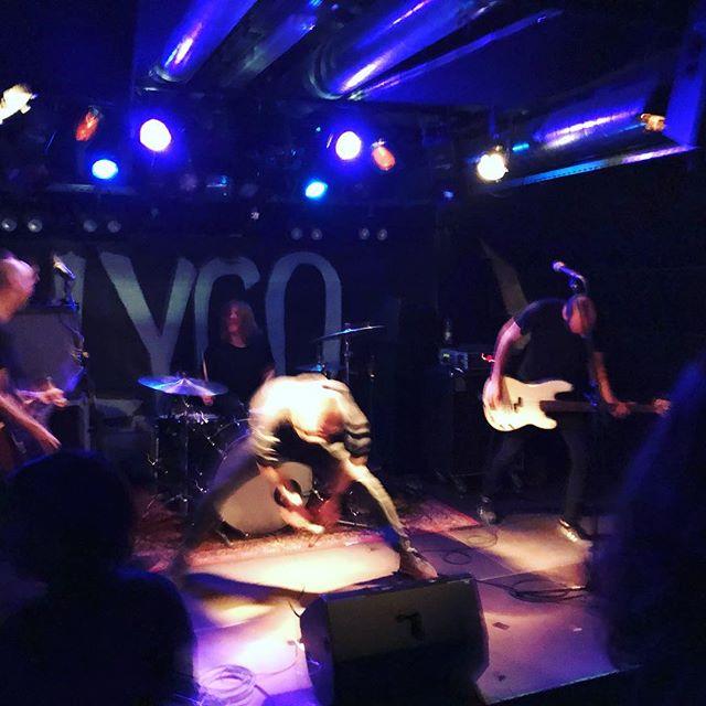 Danke @lygoband und @tigeryouth_punk und @notscientists für diesen sehr sehr schönen Abend! ❤️ #punk #punkrock #dynamozürich