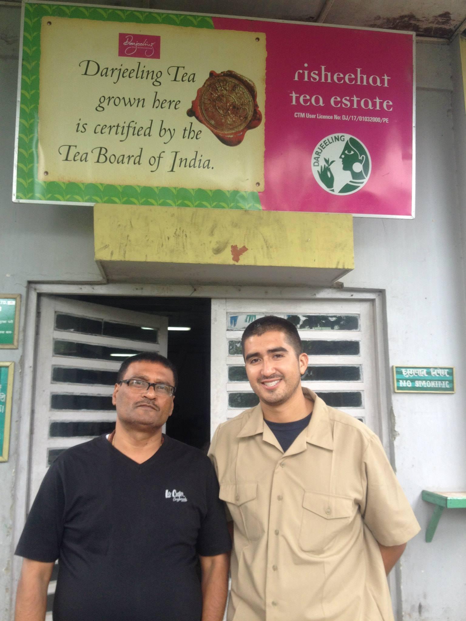 Organic Tea Plantation