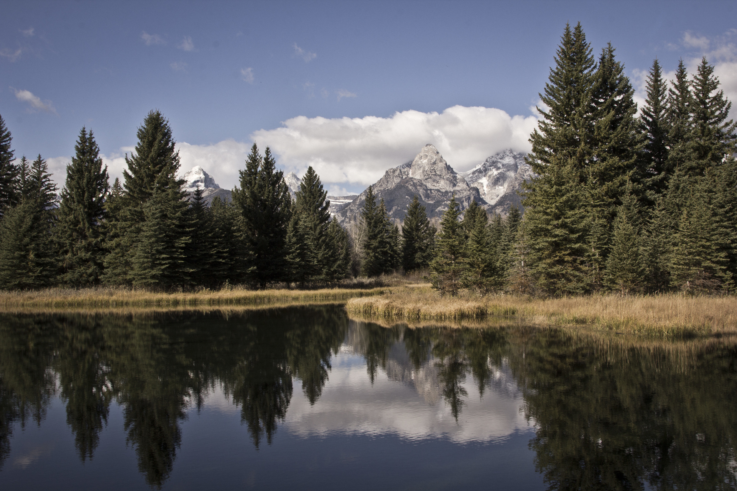 Reflecting the Tetons