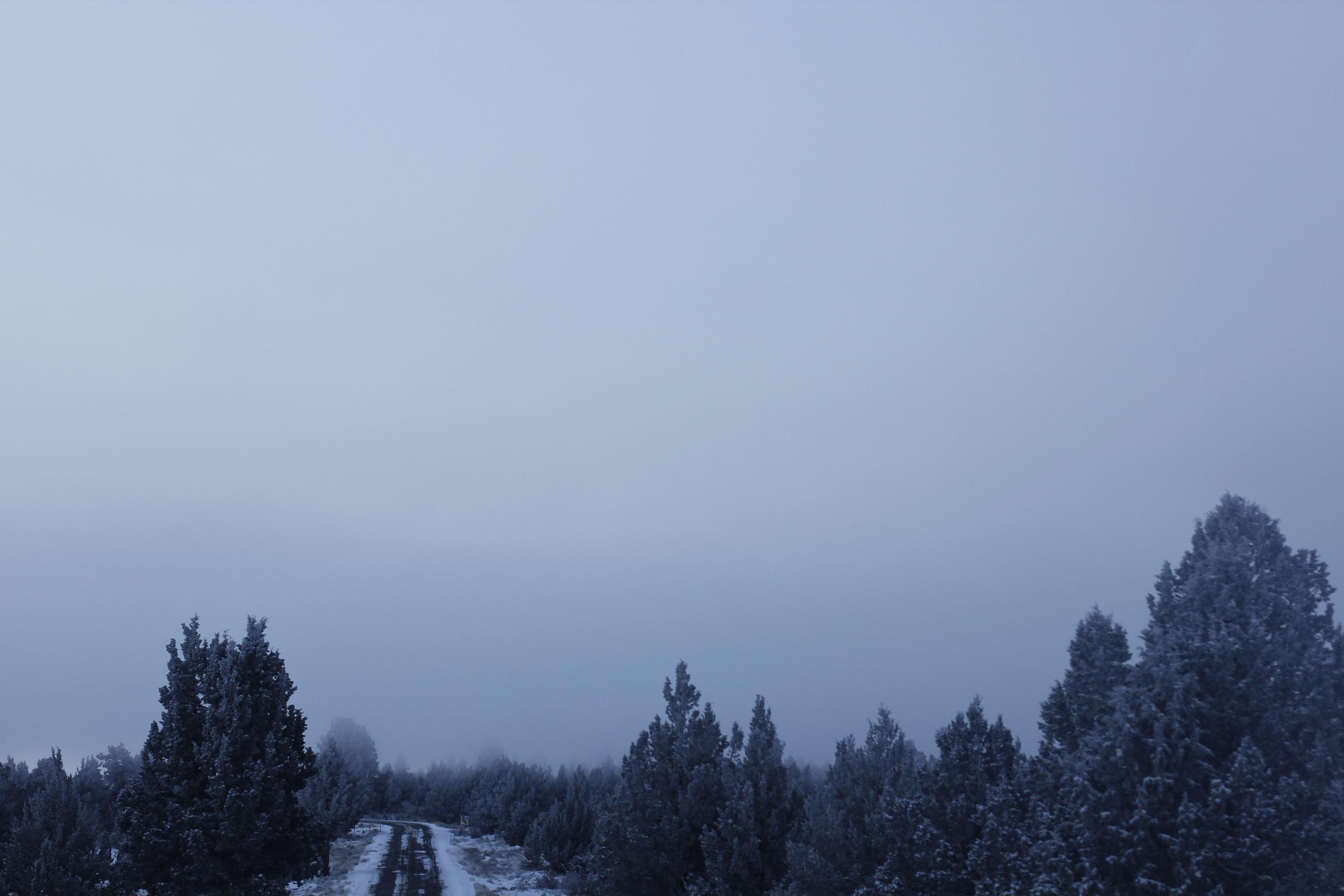 Frozen Roads