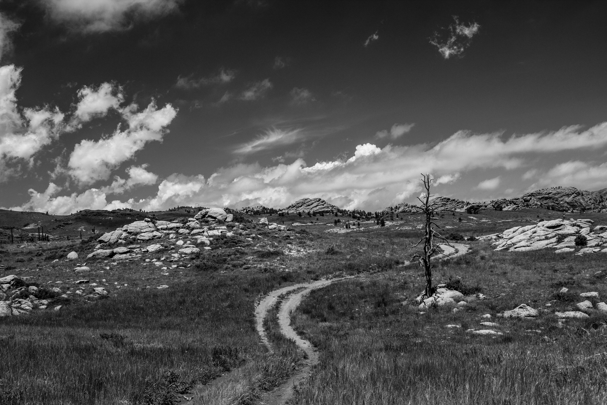 THE UNKNOWN ROAD, WY