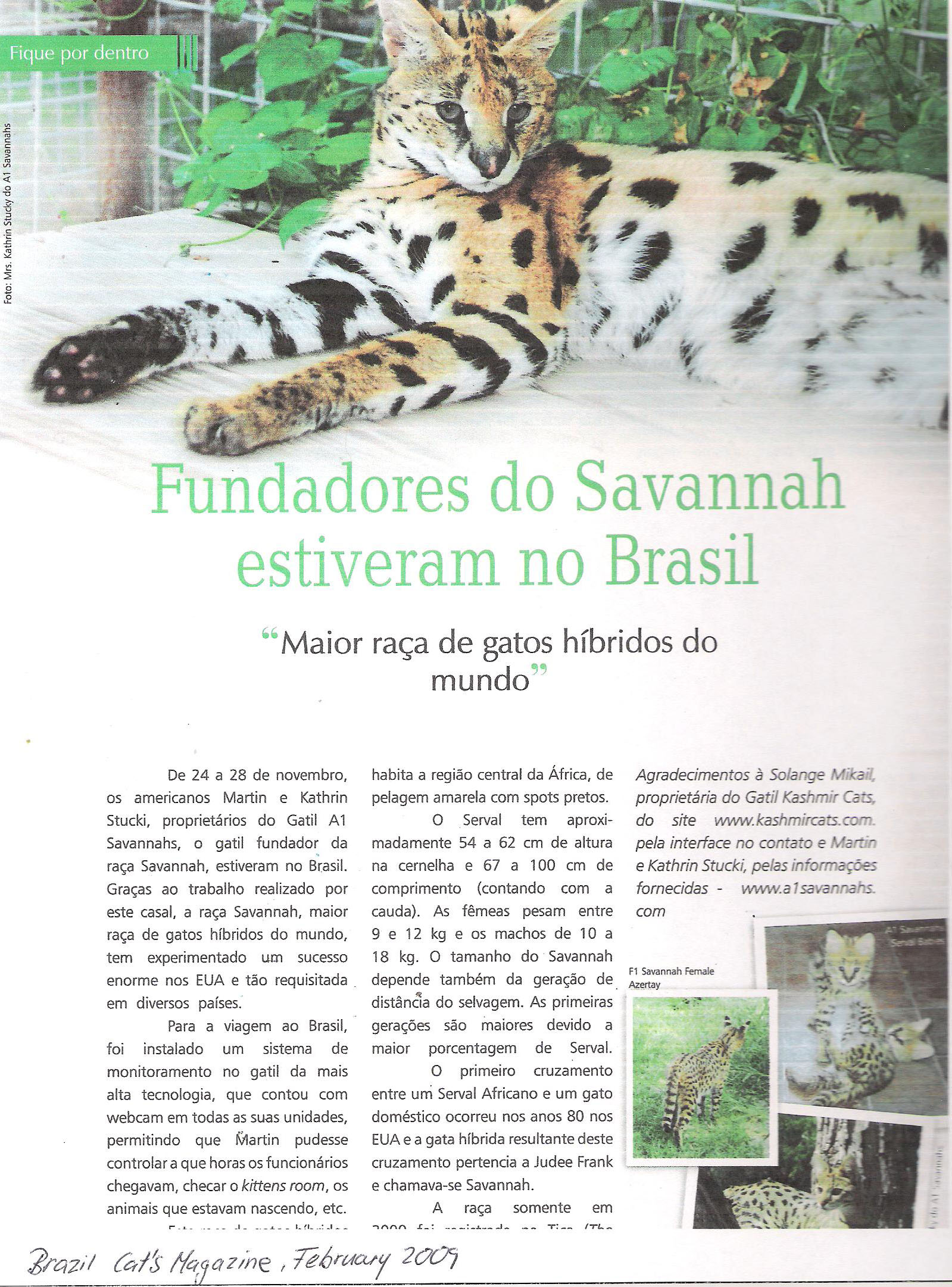 A1Savannahs Brazil Cat Magazine page 1
