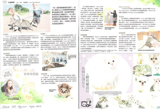 August 2009 - Chinese Cat's Magazine about A1Savannahs