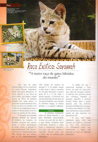 Pulo do Gato Edition 44