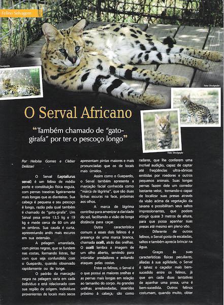 Pulo do Gato Edition 34 about A1Savannahs