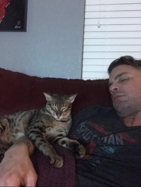 f5 beaux is snuggled up on dad's shoulder