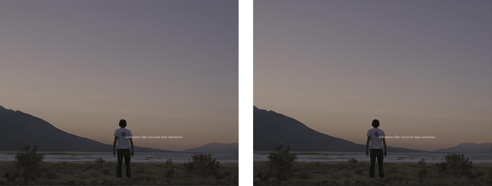 """like you, 2008  chromogenic prints, diptych, 50.8cm x 40.6cm / 20"""" x 16"""""""