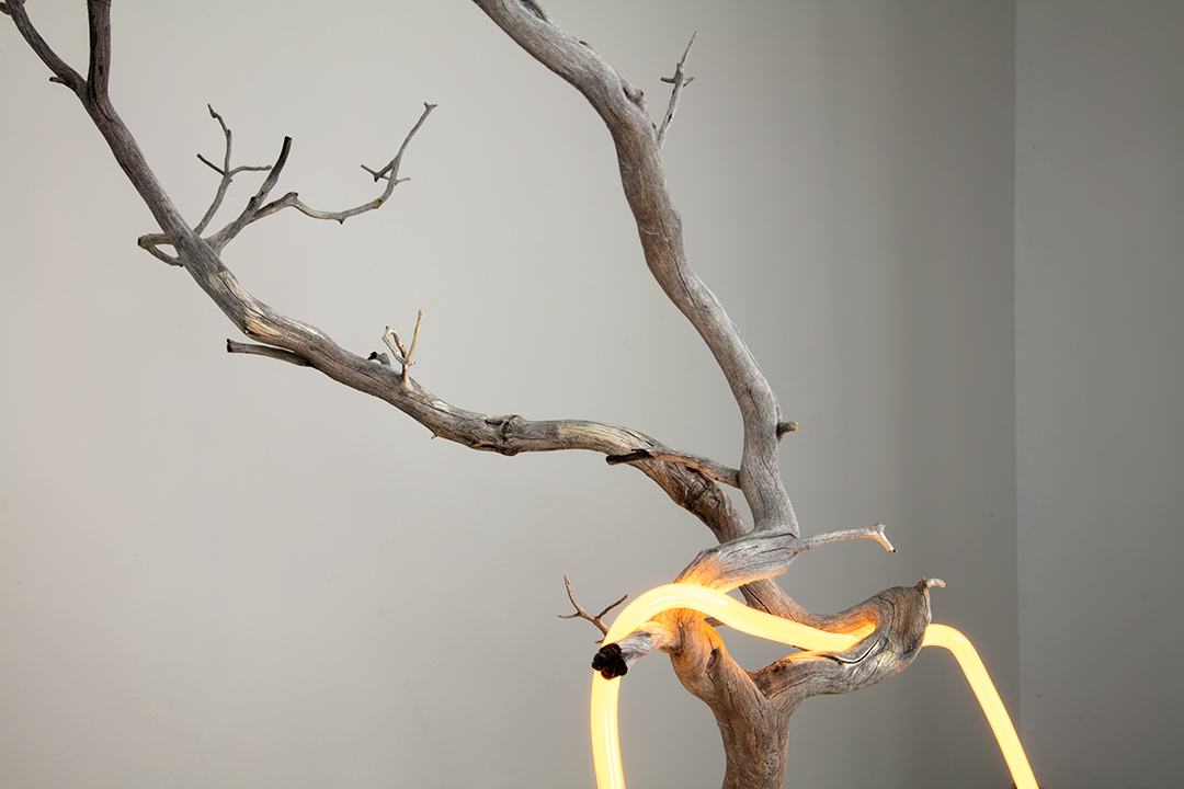 """an outline of a thought as it refers to its inner self #5, 2018  neon, found branch, modified rock, custom shaped pedestal, 76cm x 143cm x 89cm / 30"""" x 56"""" x 35"""""""