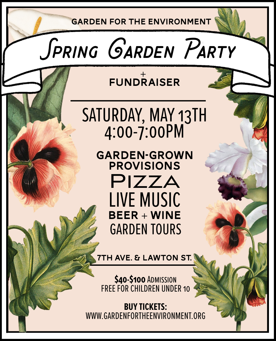 Thank you so much to the talented McKenzie Phelan for designing us a beautiful poster for this event!