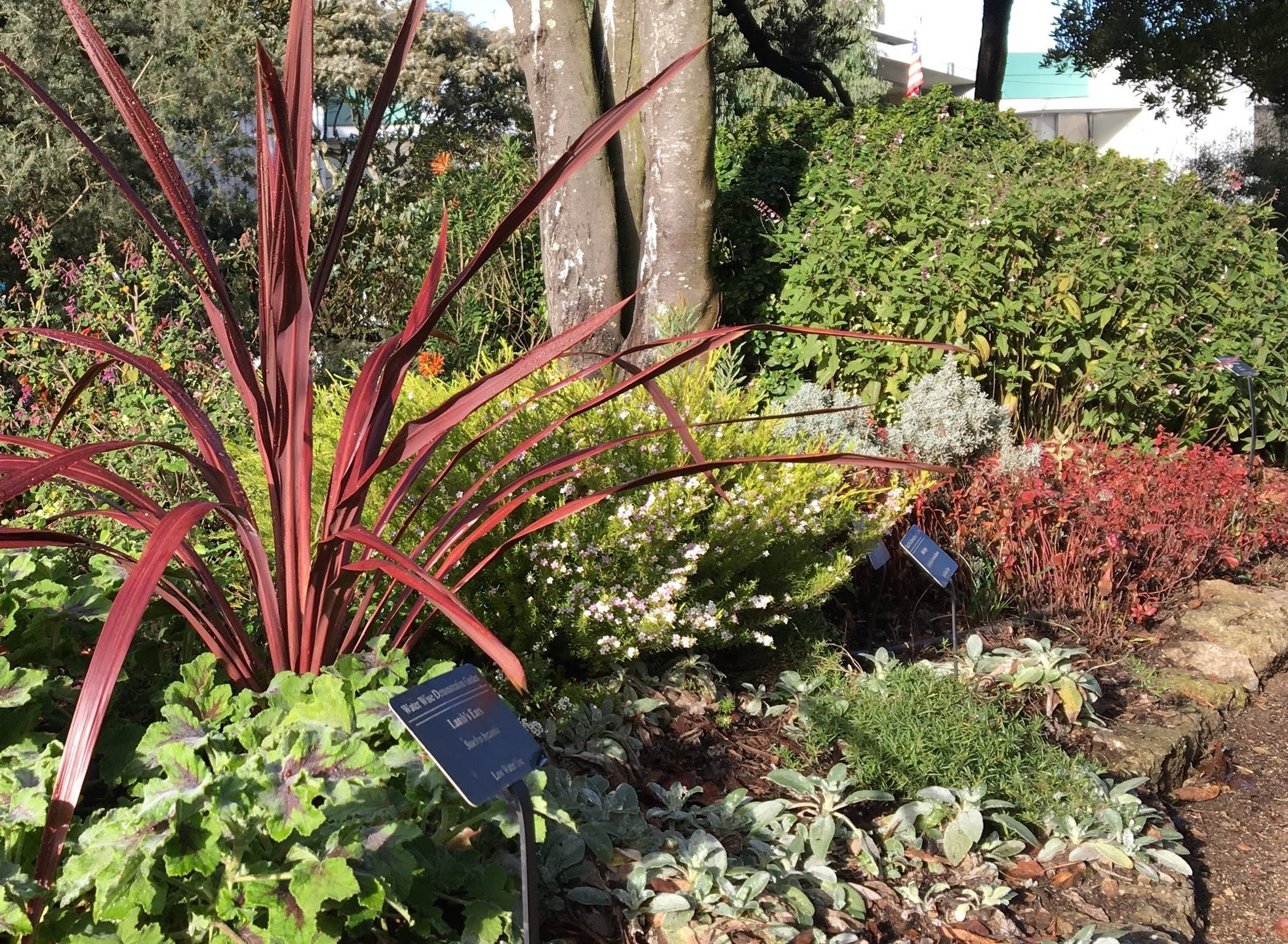 Water-wise garden identification signs.