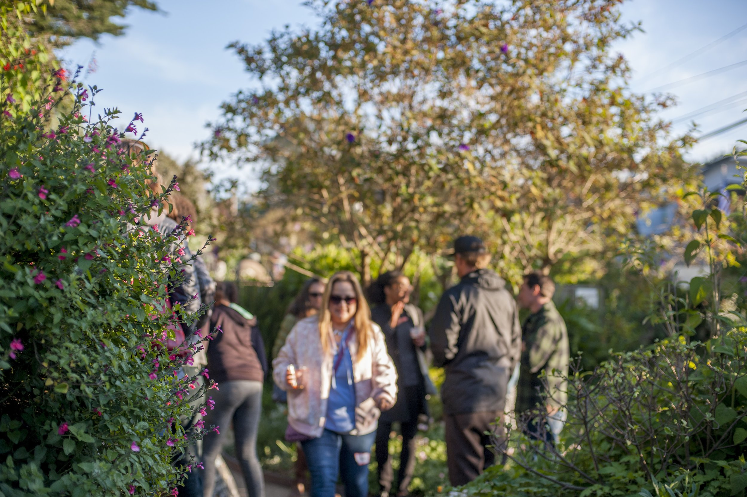People enjoying the natural beauty of the garden.