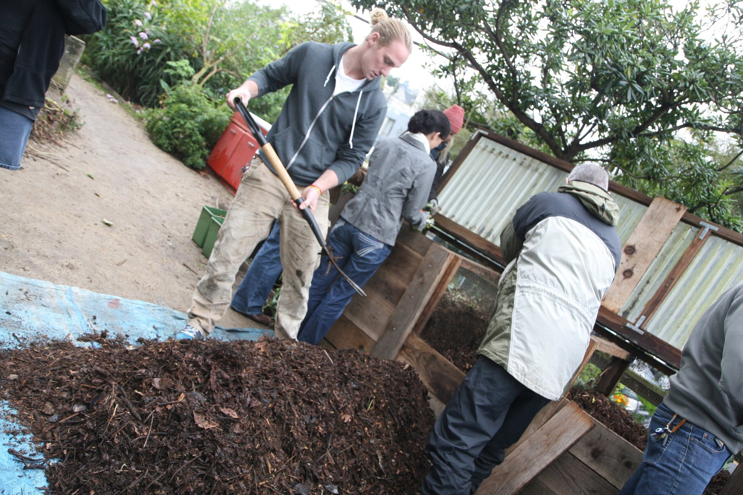 Turning the nearly-done compost.