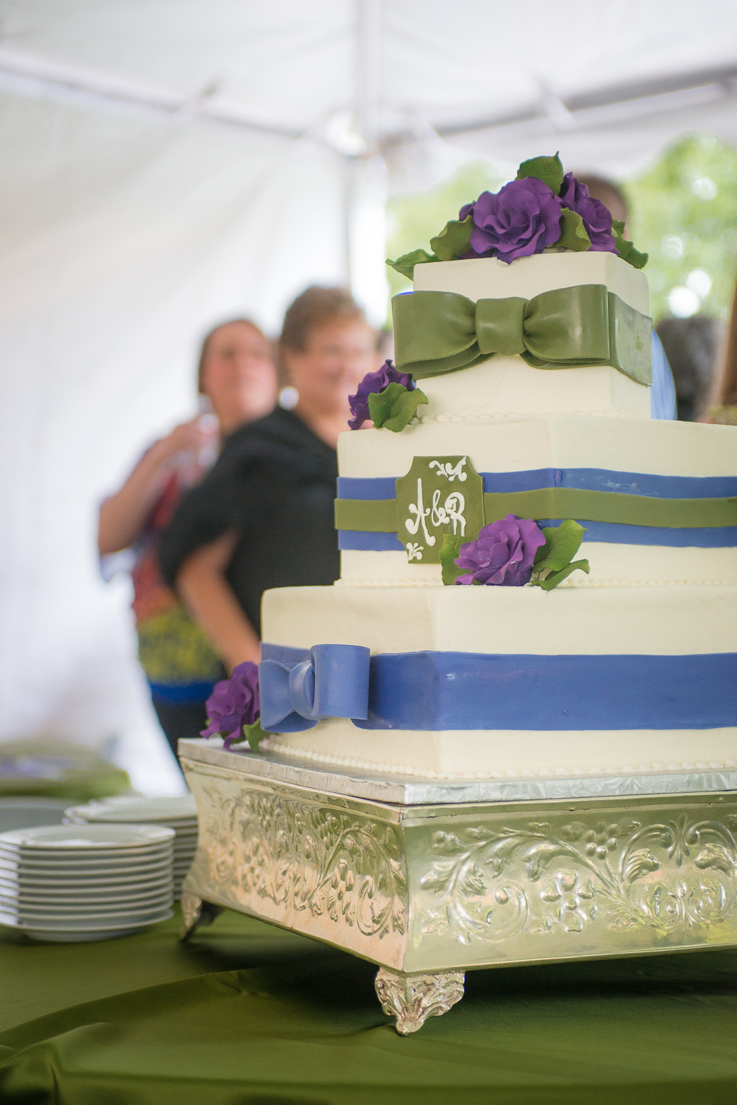 Michael-Napier-Weddings-Ludwig-Guilbeau Wedding-20 (25).jpg