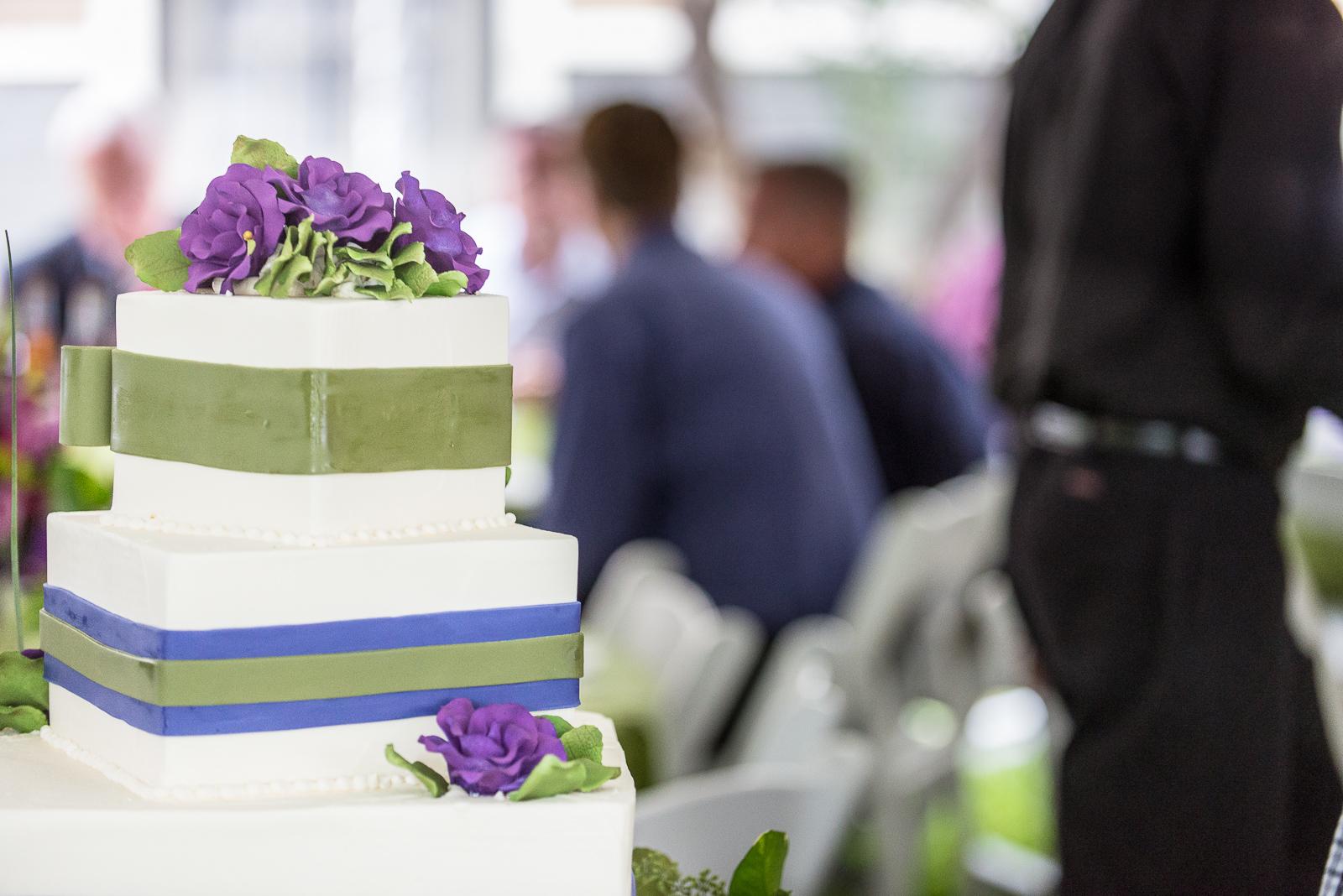 Michael-Napier-Weddings-Ludwig-Guilbeau Wedding-20 (29).jpg