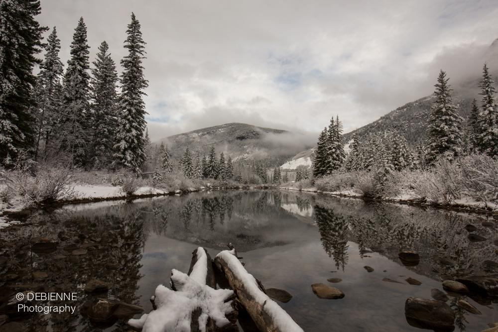 Mt. Loretta Pond