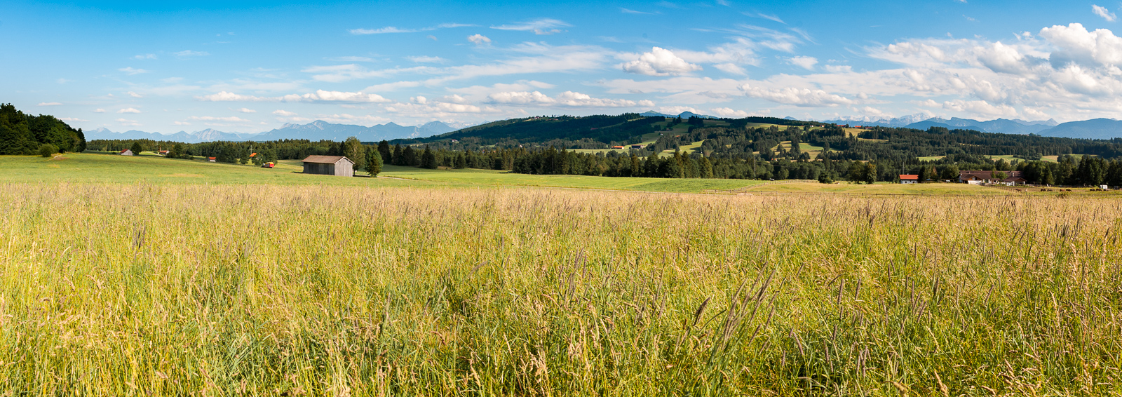 Rural Germany-.jpg