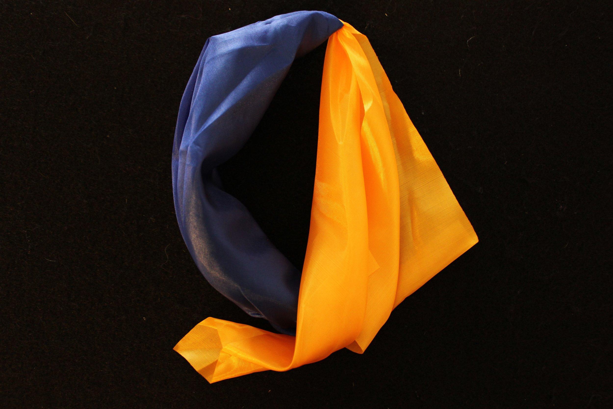 silk change 1.jpg