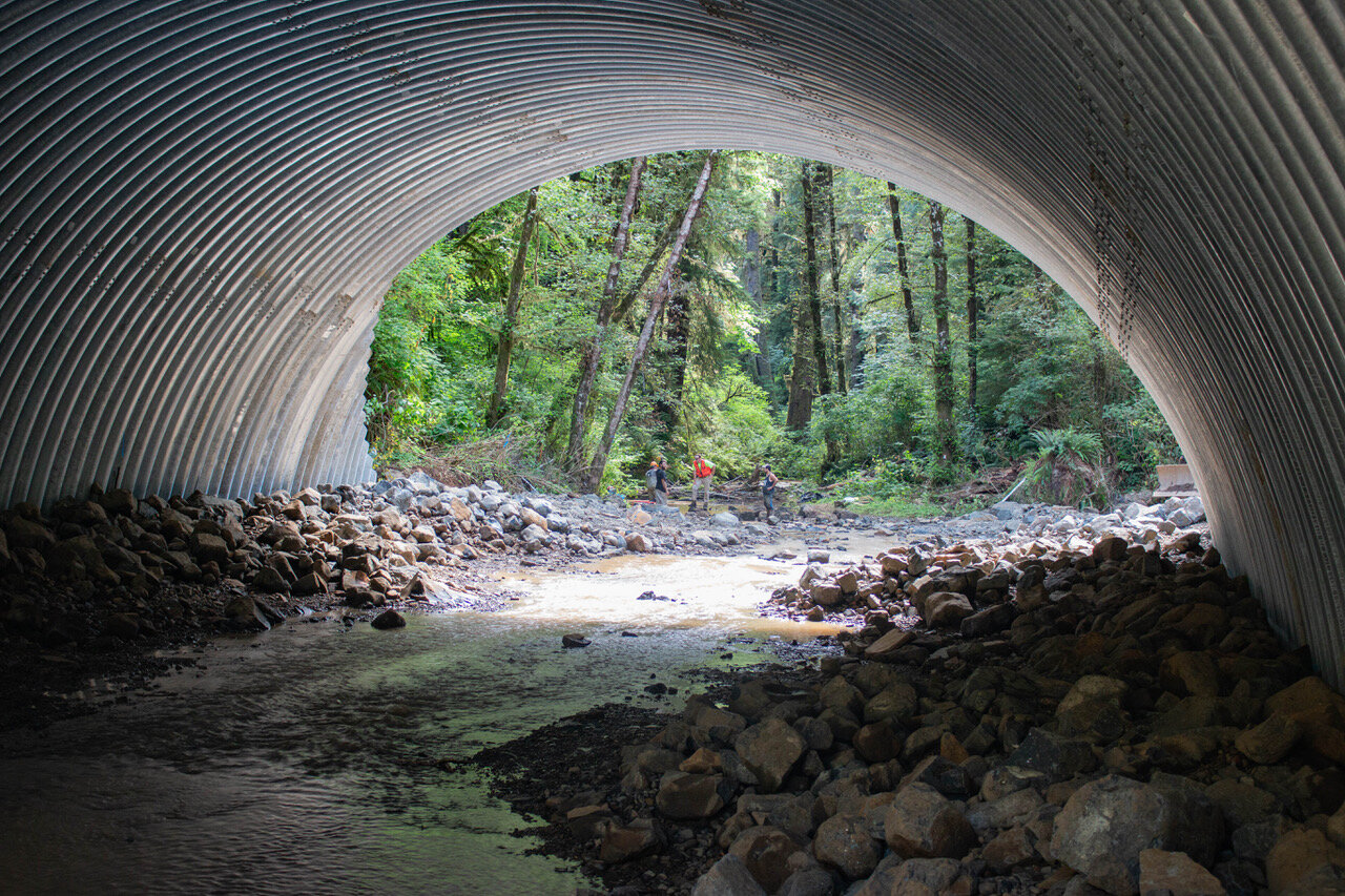 View of the new 50 ft wide, 15 ft high culvert from inside.