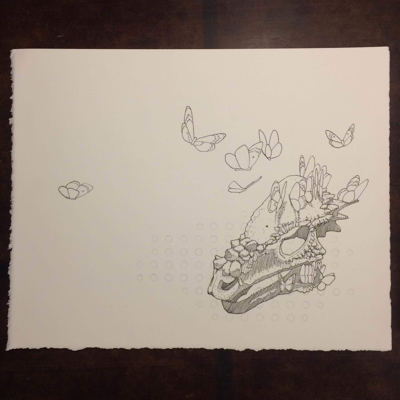 Skull drawing 1_ Unfinished.JPG