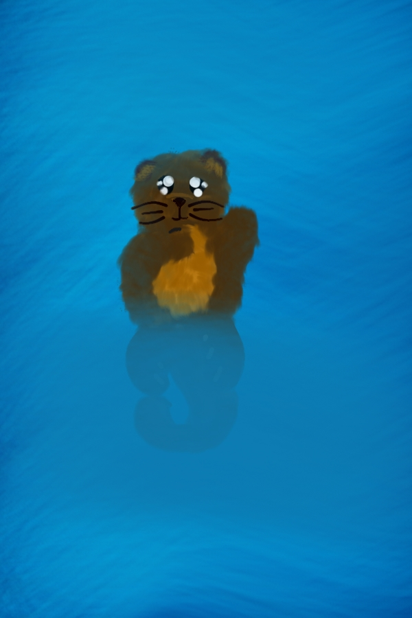 Don't Let Go - A children's book about two sea otters who when together, can fight even the weather!