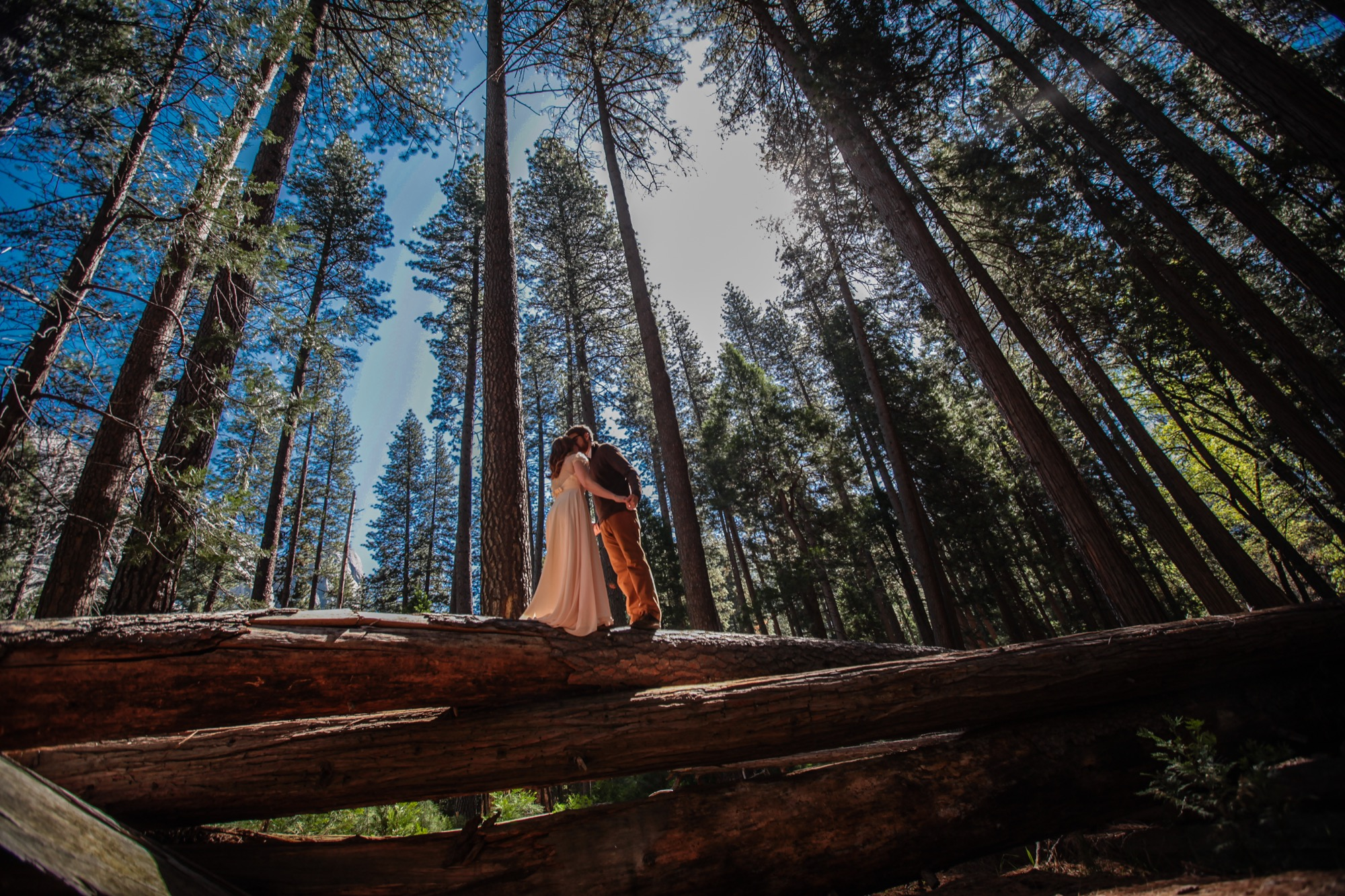 photo of scenic Yosemite wedding photography