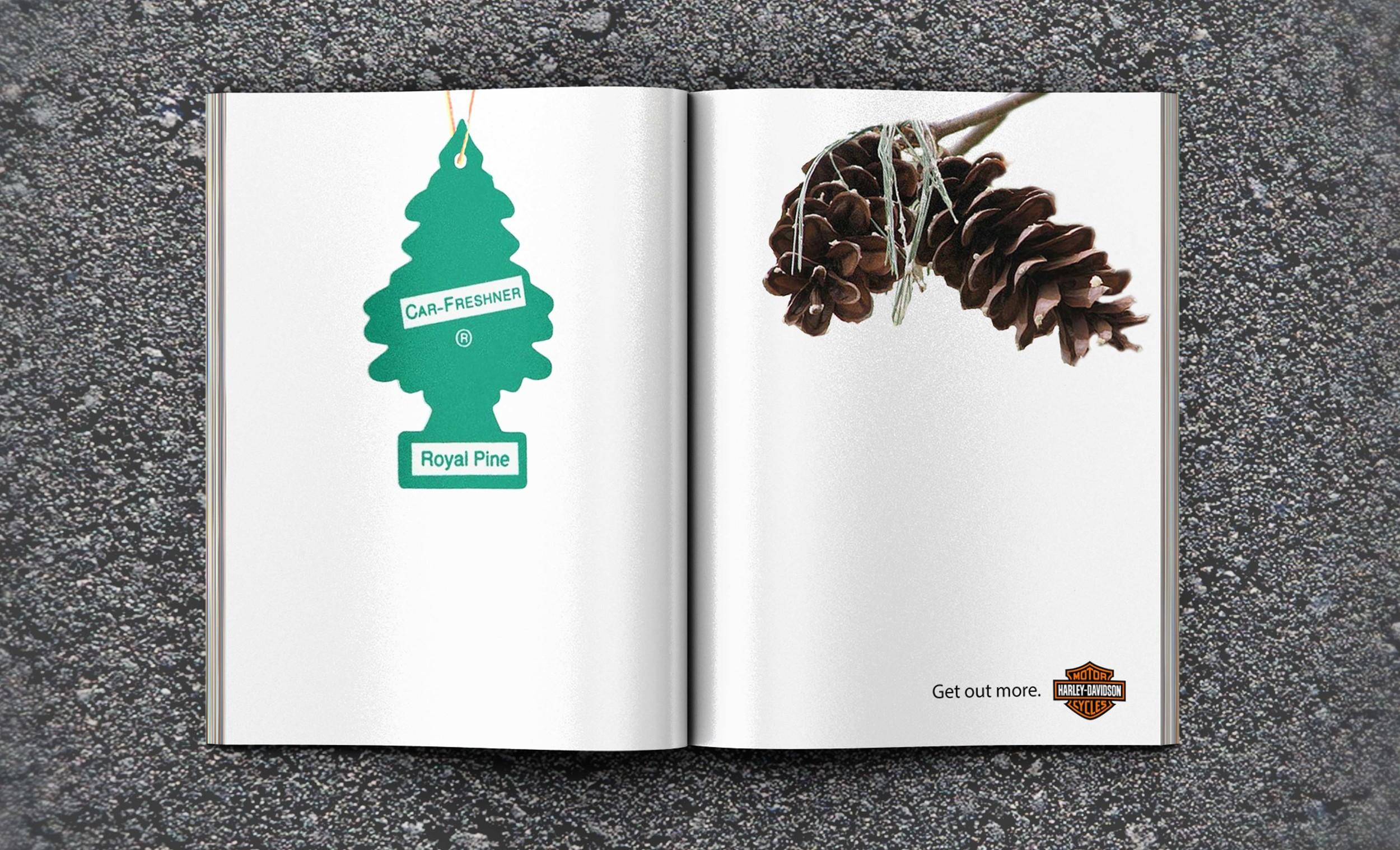 harley-pine-mag.jpg