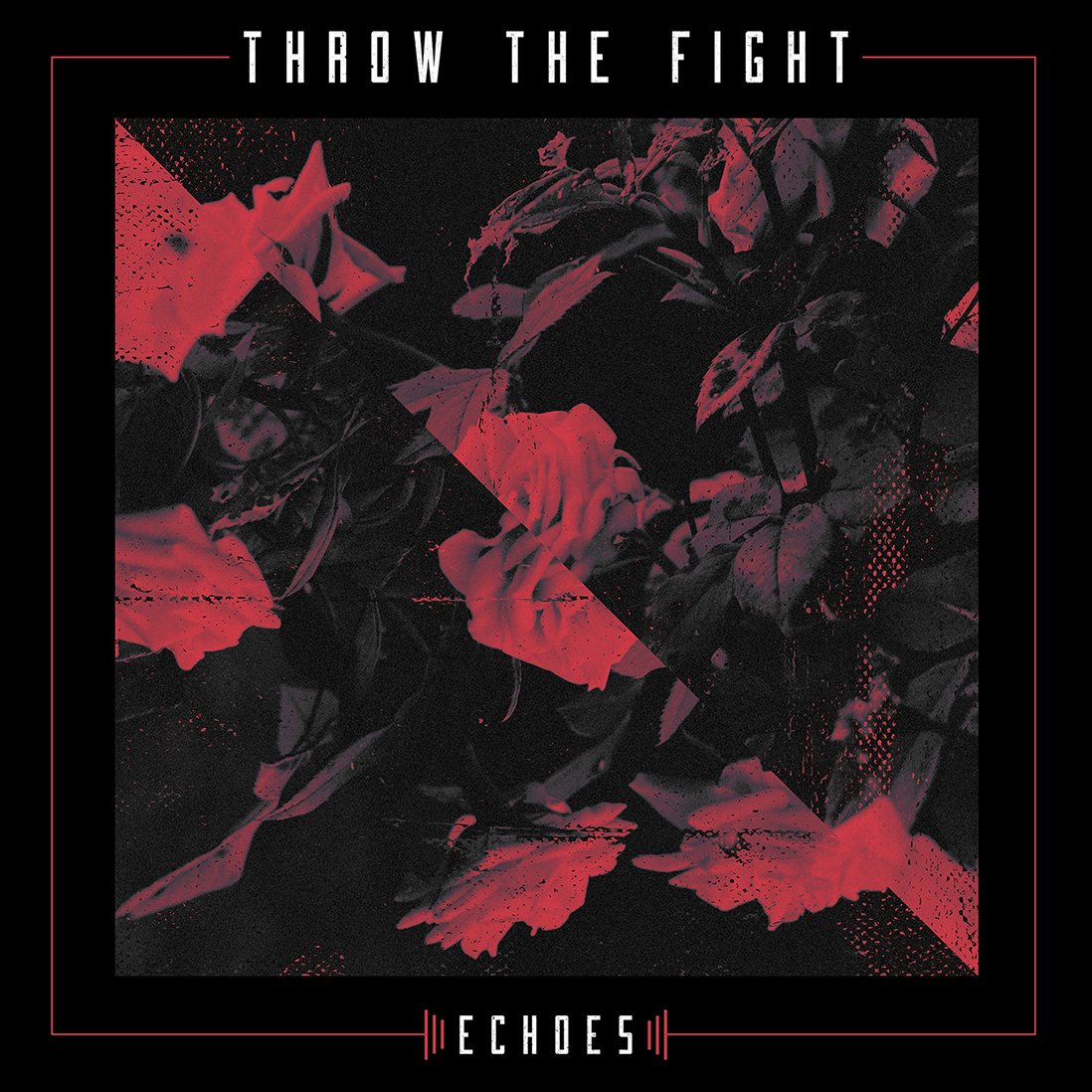 throw-the-fight-echoes.jpg