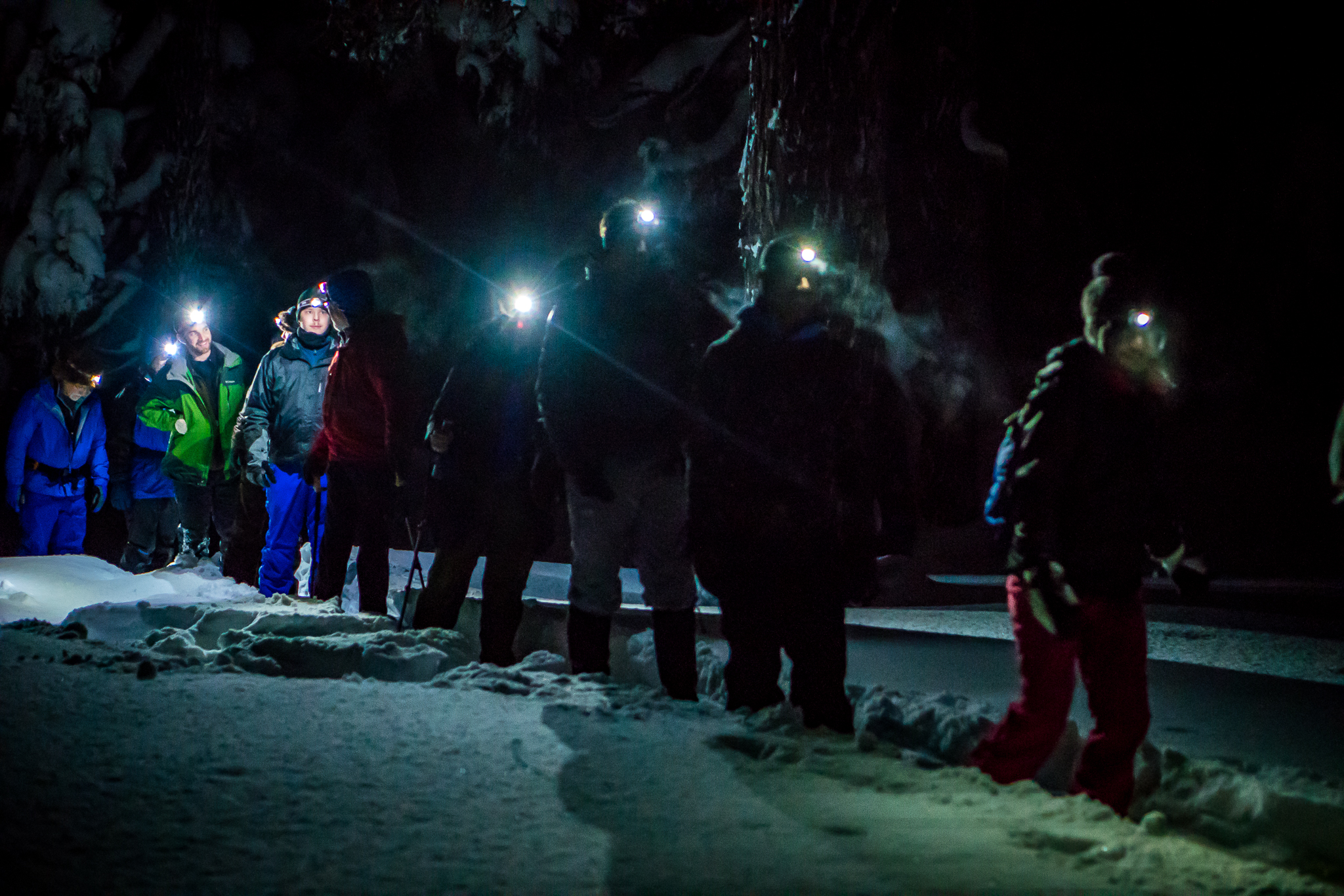 Snowshoe the mountain under the night sky and listen for woodland winter creatures on our Moonlight or Starlight Snowshoe Tour.