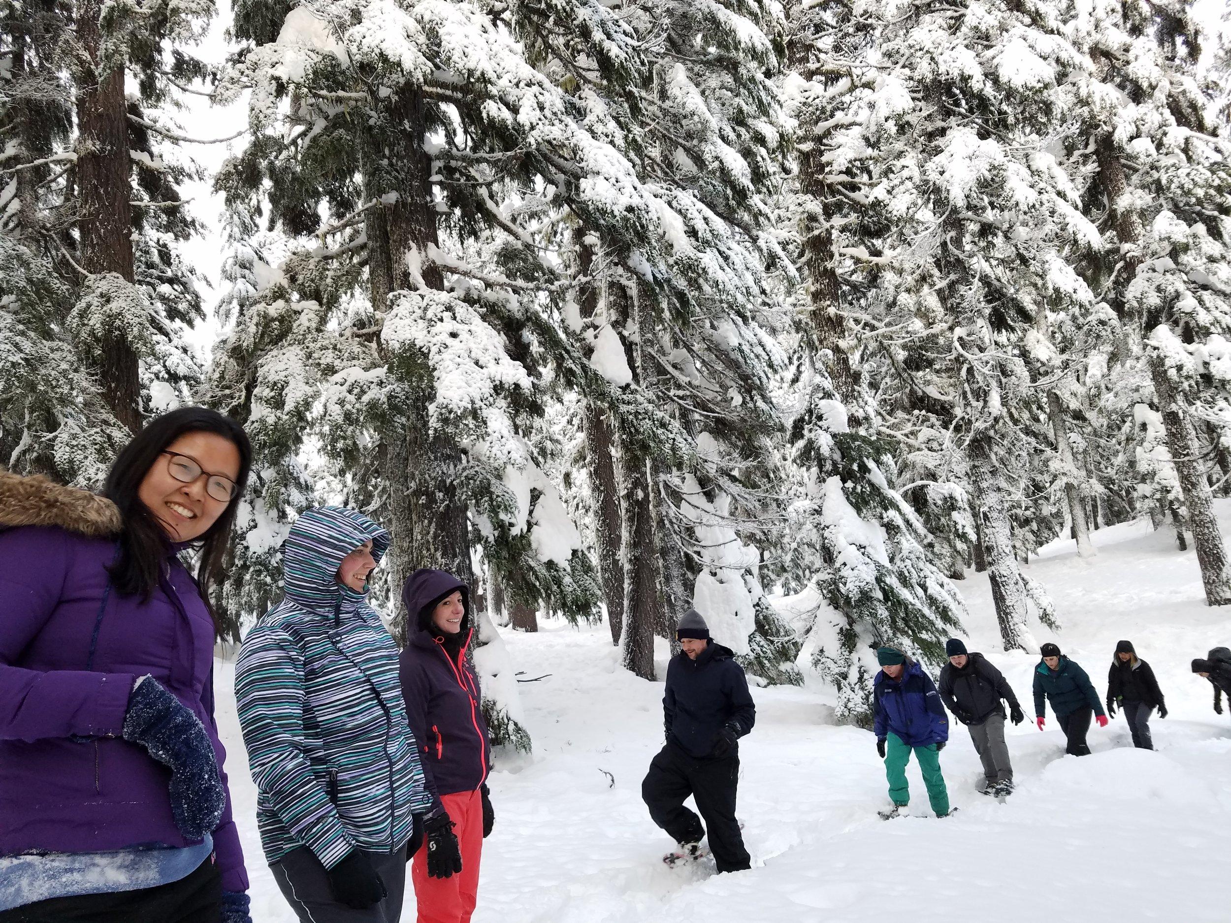 Snowshoe Tour Mt. Bachelor