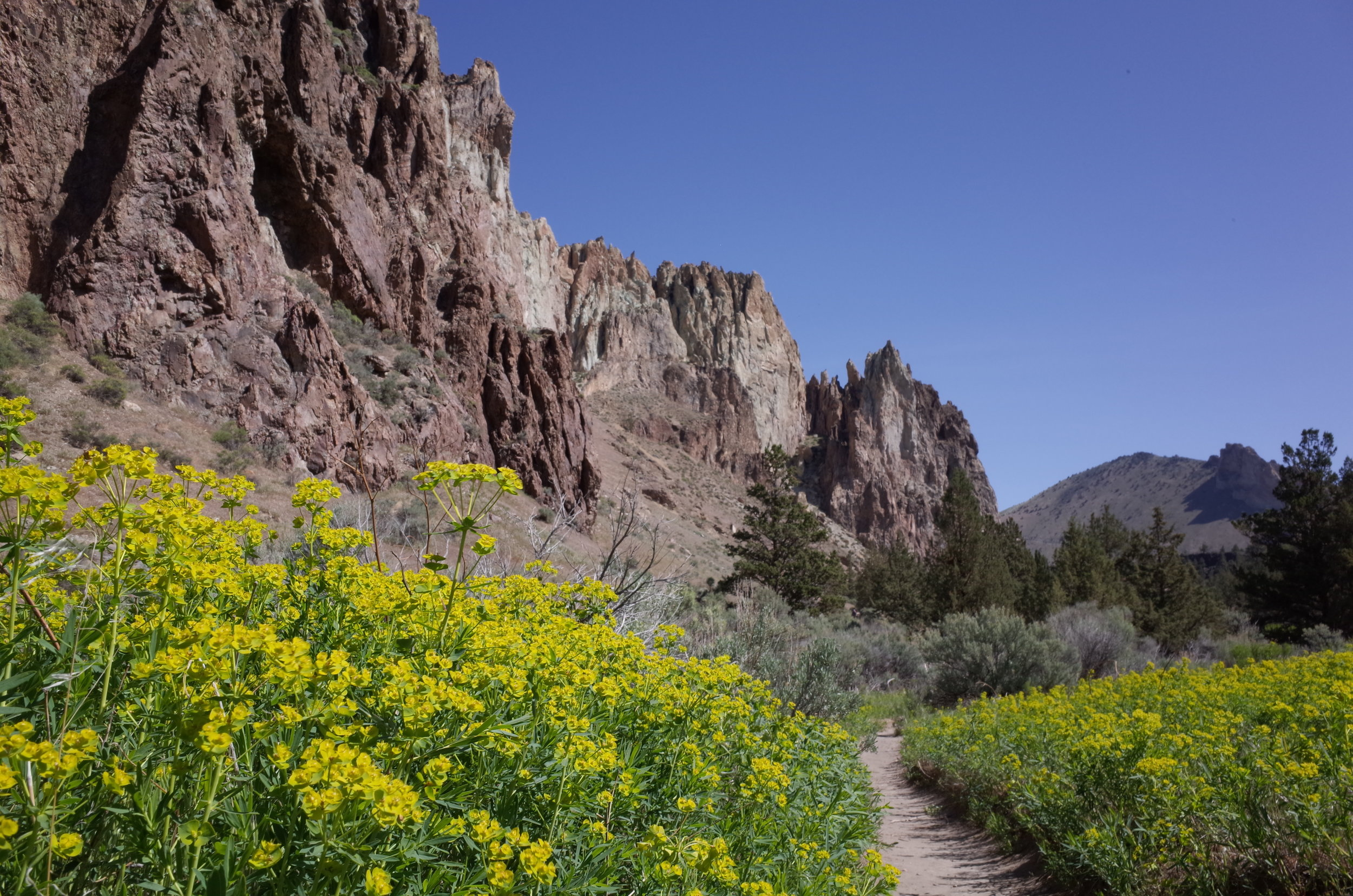 When to visit Smith Rock
