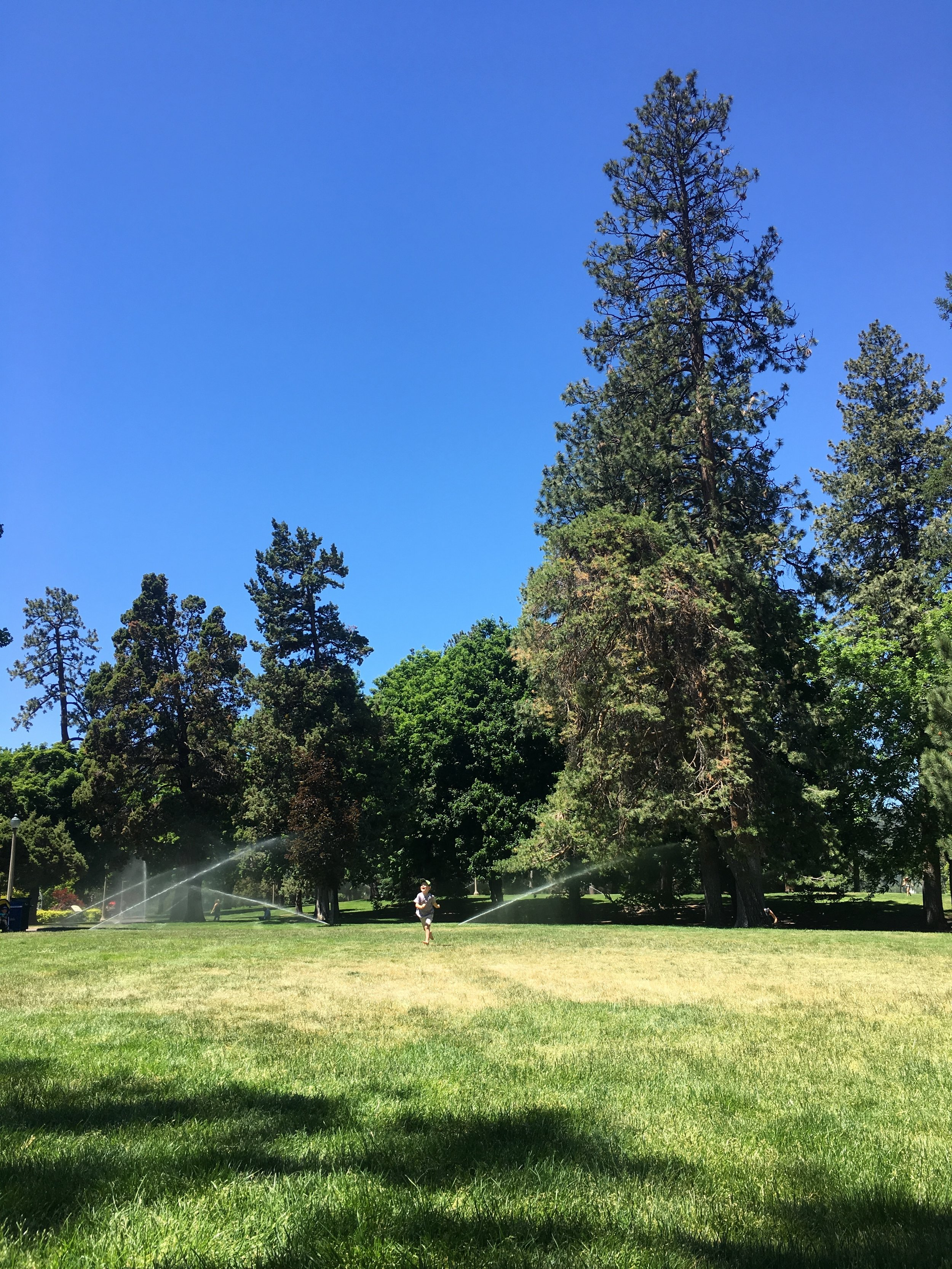Drake Park Bend Oregon